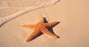 Charm island discovery - Phu Quoc