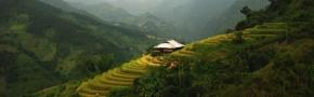 Information: Vietnam & Asia gallery