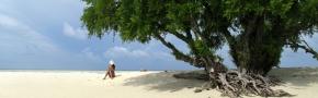 Beach Tours: Nha Trang Bay