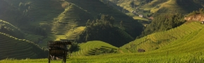 Sapa: Muong Hoa light trek